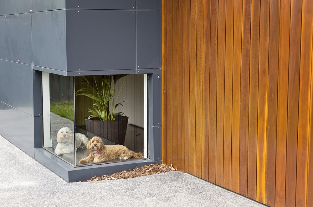 Home Cladding Options